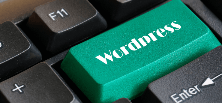 WordPress Secured Payment