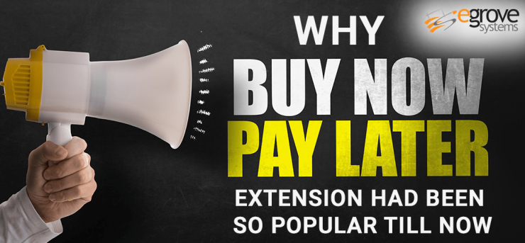 Why Buy now pay later module is popular