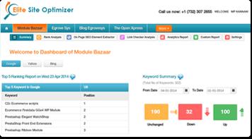 Elite Site Optimizer