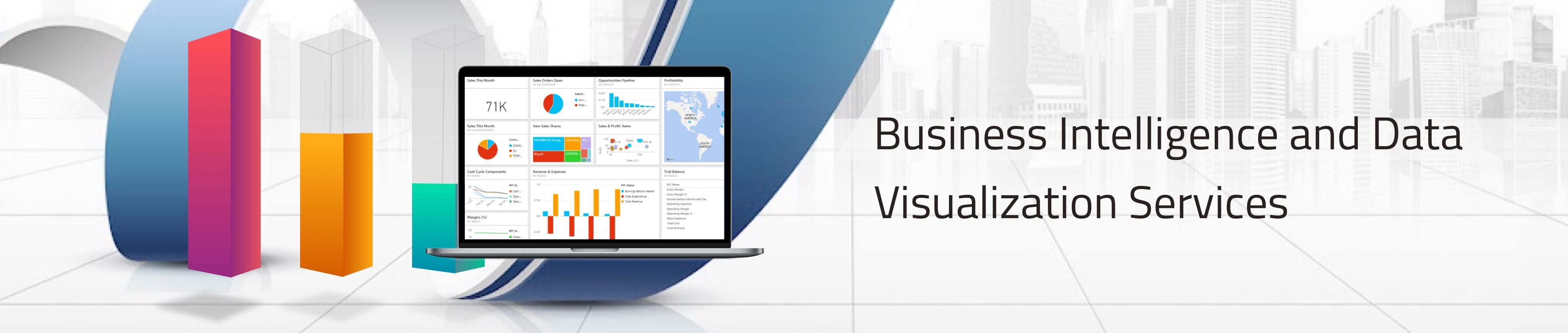Business Intelligence and Data Visualization Services